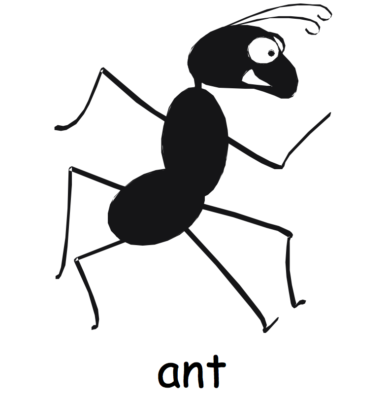 Large Ant Graphic
