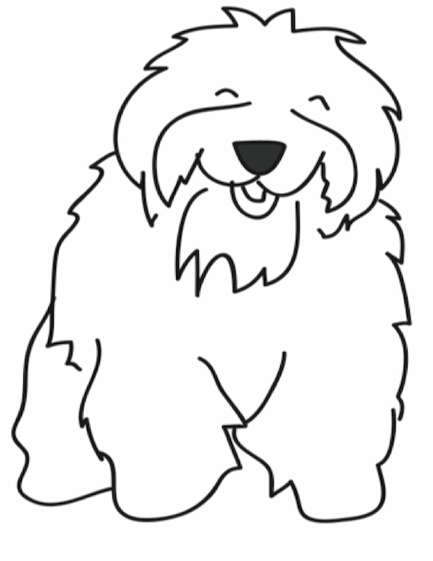 Shelly Sheep Dog Graphic