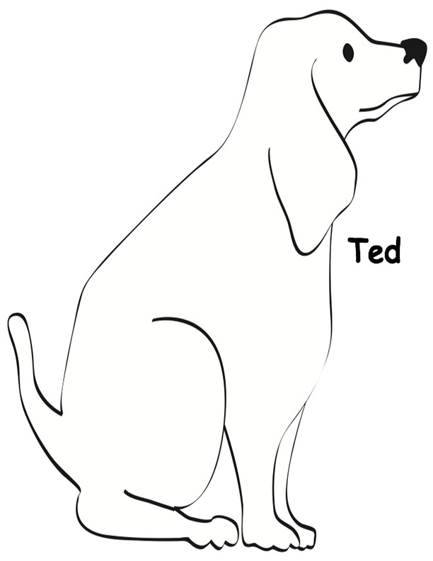 Ted the dog