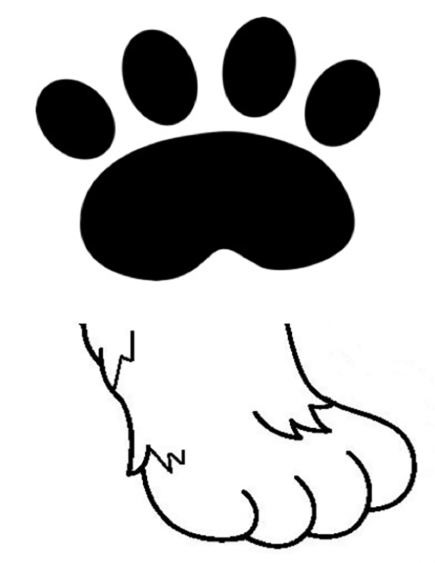 Pawprint and a cat's paw