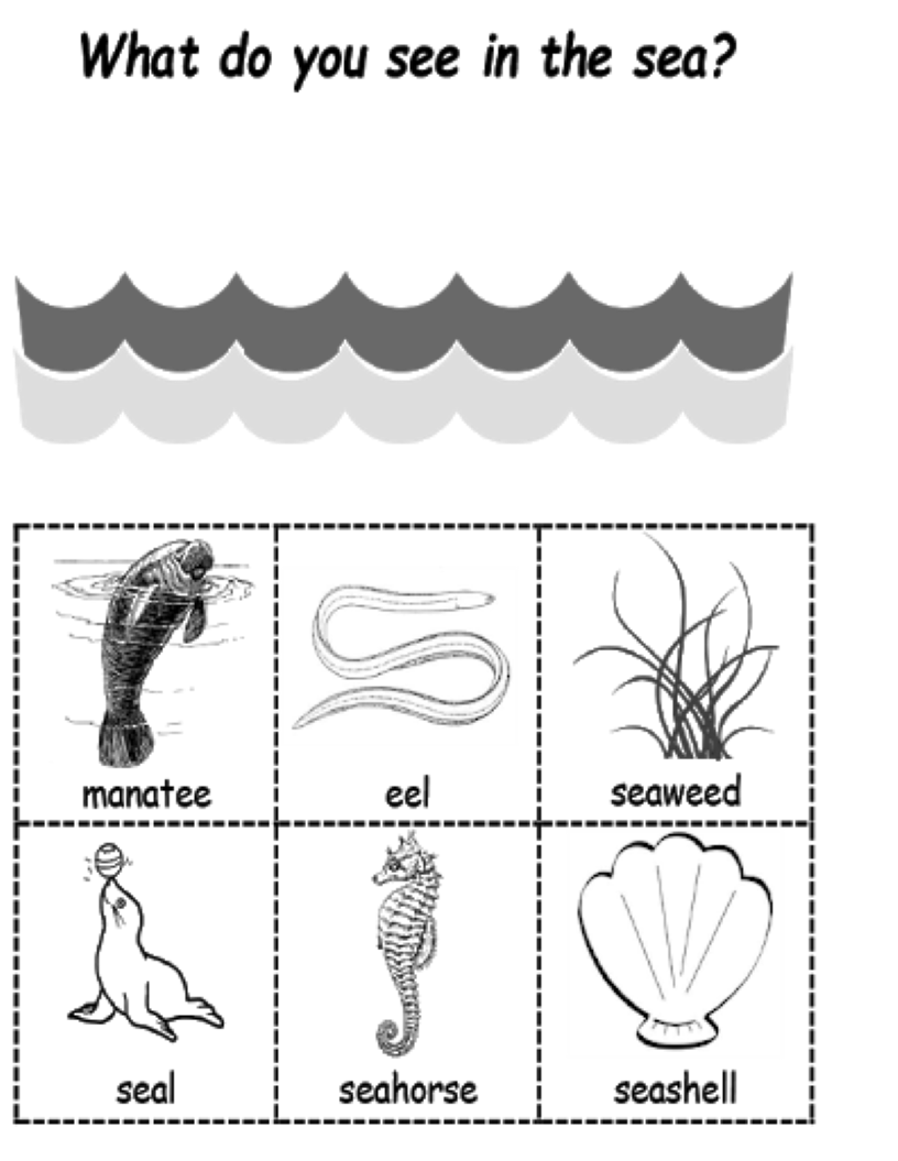 Sea and picture cards
